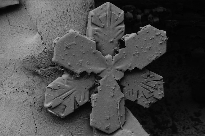 Northwest Snow: Incredible Snowflake Shapes Through A Microscope