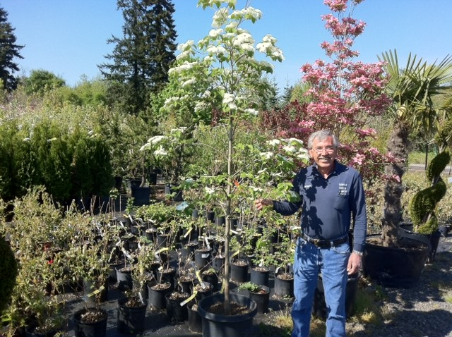 An Interview With Local Nursery Owner Richard Barhoum
