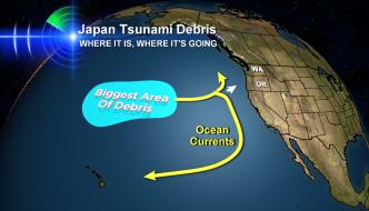 SUSS_Tsunami_Debris